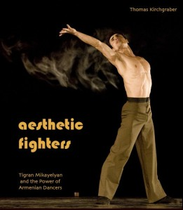 Aesthetic Fighters Cover